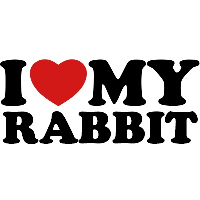 I love my rabbit